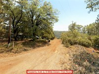 Nearly Half Acre Lot In Northern Ca : Paynes Creek : Tehama County : California
