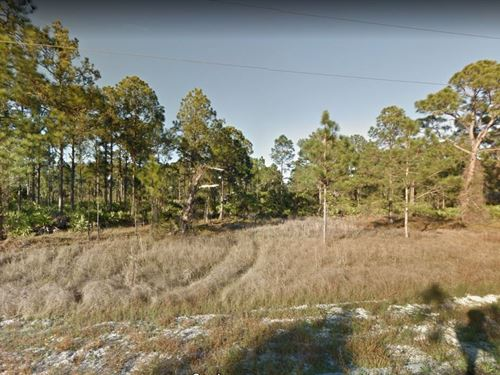.23 Acres In Lehigh Acres, FL : Lehigh Acres : Lee County : Florida