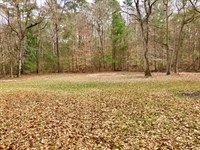 Secluded Camp Joining Nat'l Forest : Crosby : Wilkinson County : Mississippi