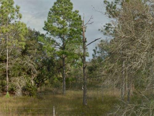 Polk County, Fl $15,000 Neg : Frostproof : Polk County : Florida