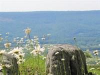 Lookout Mountain Views : Menlo : Dade County : Georgia