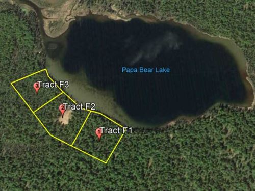 4.95 Acres on Papa Bear Lake in Ta : Talkeetna : Matanuska-Susitna Borough : Alaska