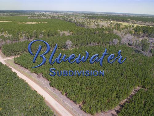 16.731 Ac T 2-13 Bluewater Rd : Schwab City : Polk County : Texas