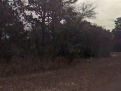 Citrus County, Fl $65,000 Neg : Beverly Hills : Citrus County : Florida