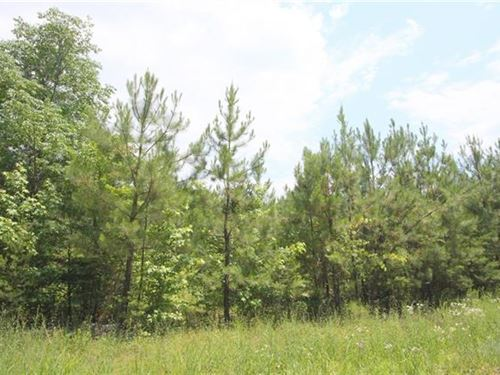10.1 Private Acres In Farmville : Farmville : Cumberland County : Virginia