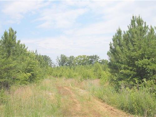 6.3 Lovely Private Acres : Farmville : Cumberland County : Virginia