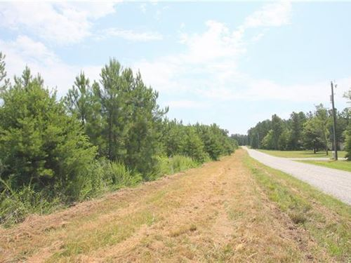 Lovely Private 6.3 Acre Lot : Farmville : Cumberland County : Virginia