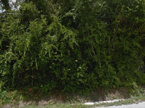 Volusia County, Fl $30,000 Neg : Orange City : Volusia County : Florida