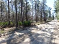 Homebuilder's Site On Dove Drive : Jesup : Wayne County : Georgia