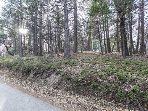 .54 Acre In Sequoia Nat Forest : Springville : Tulare County : California