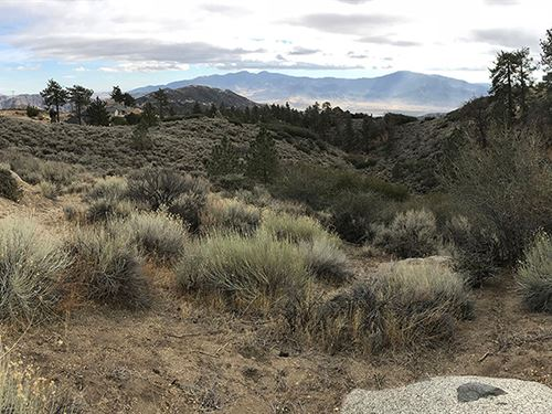 1.4 Acre Tehachapi Mountain Getaway : Tehachapi : Kern County : California