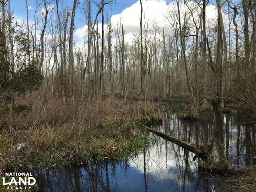Little Salkehatchie Recreational Ho : Denmark : Bamberg County : South Carolina