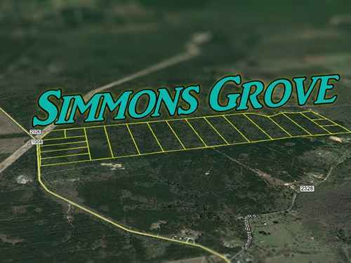 10.03 Ac Simmons Grove Tr 6 : Dayton : Liberty County : Texas