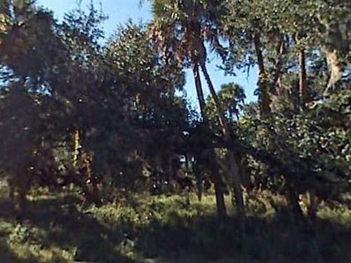 Polk County, Fl $10,000 Neg : Frostproof : Polk County : Florida