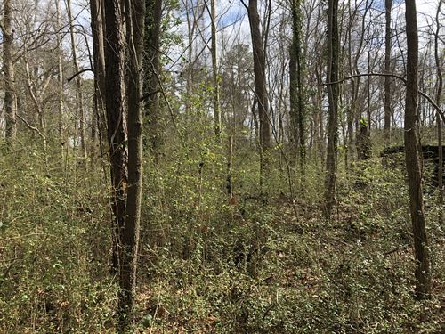 Lot For Sale In Jamesville Nc : Jamesville : Martin County : North Carolina