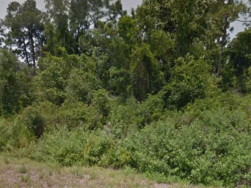 Highlands County, Fl $3,000 Neg : Lake Placid : Highlands County : Florida