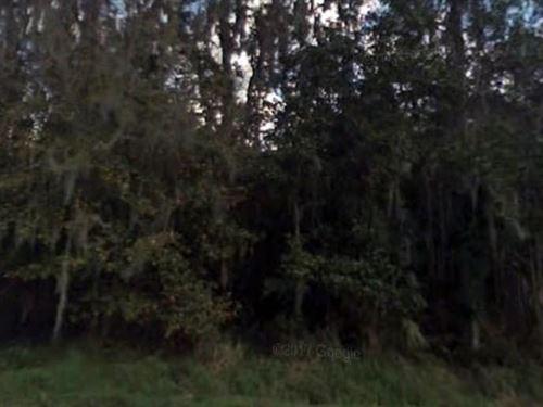 Polk County, Fl $25,000 Neg : Winter Haven : Polk County : Florida