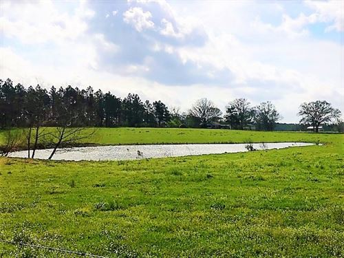Gorgeous 6.08 Acre Home Site For Sa : Purvis : Lamar County : Mississippi