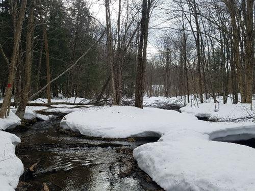 Vorea Acres - Adjoins State Land : Orwell : Oswego County : New York