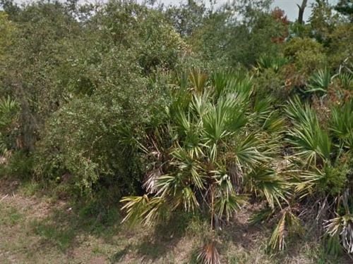 Flagler County, Fl $150,000 Neg : Palm Coast : Flagler County : Florida