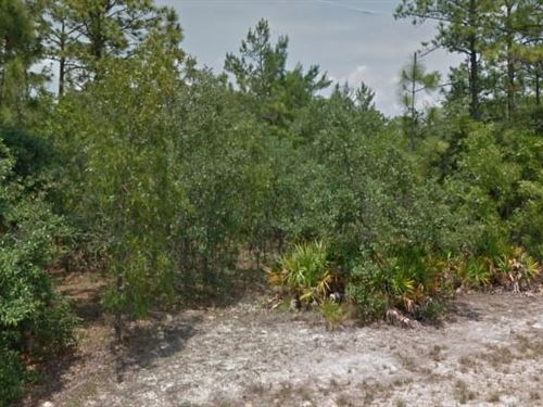 Citrus County, Fl $40,000 Neg : Beverly Hills : Citrus County : Florida
