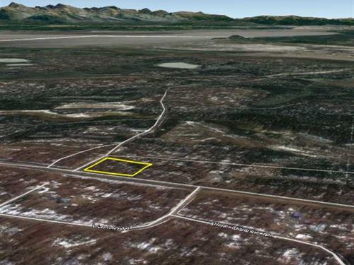 2.18 Acres - Nicely Wooded Residen : Wasilla : Matanuska-Susitna Borough : Alaska