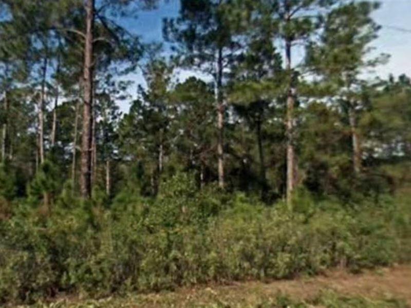 Johns County Property Appraiser