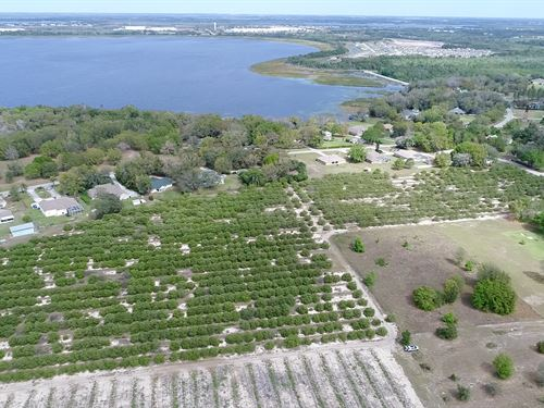 13 Acres - Rankin Rd/Country Club R : Winter Haven : Polk County : Florida