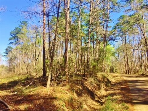 Small Acreage Land No Restrictions : Ruth : Pike County : Mississippi
