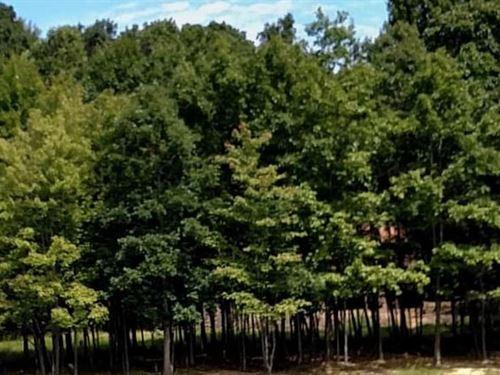 Clearfield County, Pa $10,000 Neg. : Dubois : Clearfield County : Pennsylvania