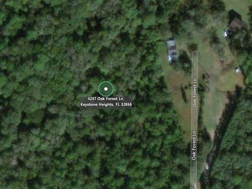 6.2 Acres In Keystone Heights, FL : Keystone Heights : Clay County : Florida