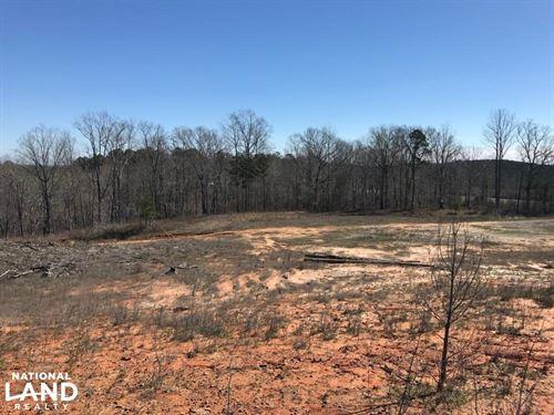 Brown Road Homesite : Northport : Tuscaloosa County : Alabama