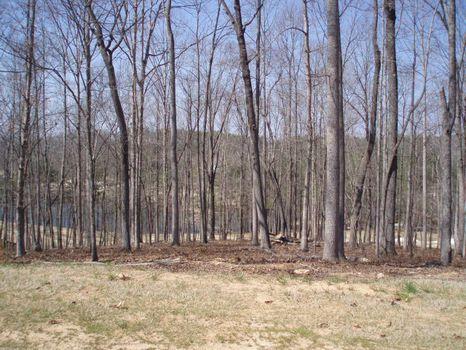 1 Acre Golf Course Lot : Alpharetta : Cherokee County : Georgia