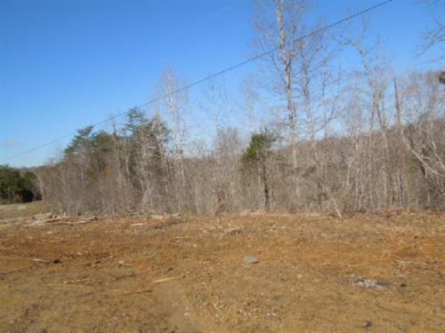 10.03 Acres Located In Rural Area : Burkesville : Cumberland County : Kentucky
