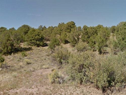 Rio Grande County, Co : South Fork : Rio Grande County : Colorado