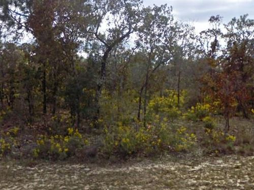 Washington County, Fl $30,000 Neg : Chipley : Washington County : Florida