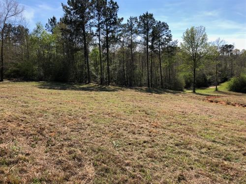 2 Acres/ Tylertown, Ms : Tylertown : Walthall County : Mississippi