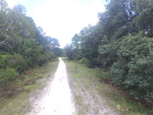Vacant NE River Country Trail : Lee : Madison County : Florida