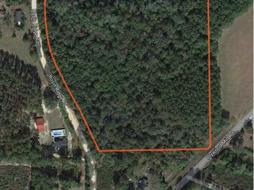 Wooded Acreage in a Nice Community : Andalusia : Covington County : Alabama