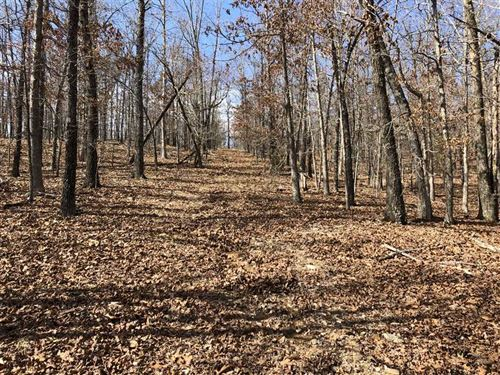 15 Acres of Timber With Pond : Ash Flat : Sharp County : Arkansas