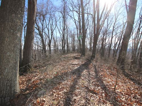 Skaggs Rd - 5 Acres : Londonderry : Ross County : Ohio