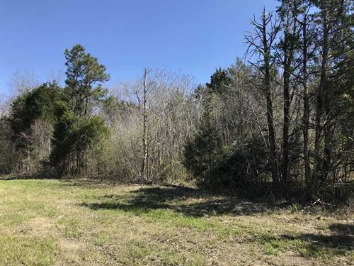 9.2 Acres Located Off Hwy, 80 in : Demopolis : Marengo County : Alabama