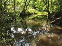 Sit And Fish All Summer Long : Ochlocknee : Thomas County : Georgia