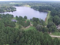 Come To The Big Woods : Ochlo : Thomas County : Georgia