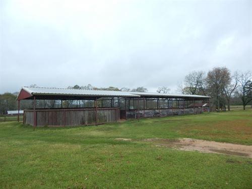 1.92 Acres In Sandy Hook : Sandy Hook : Marion County : Mississippi