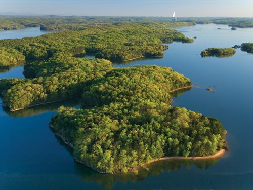 Beautifully Wooded Lakefront : Seneca : Oconee County : South Carolina