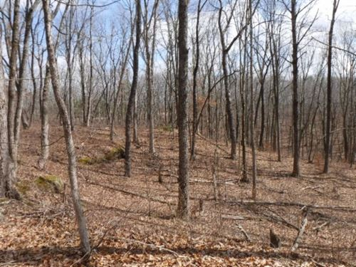 8.71 Acres, Cave, Rock Formations : Crawford : Overton County : Tennessee