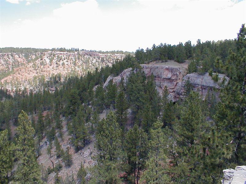 Lot 2 Camp Lakota : Hot Springs : Custer County : South Dakota