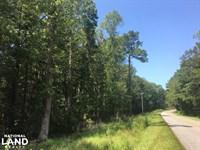 Huger 10+ Acres : Huger : Berkeley County : South Carolina