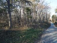 Lookout Mountain 6 Acres : Menlo : Dade County : Georgia